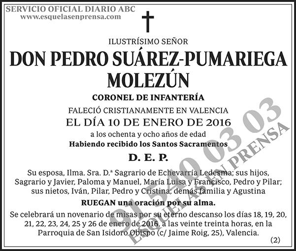 Pedro Suárez-Pumariega Molezún
